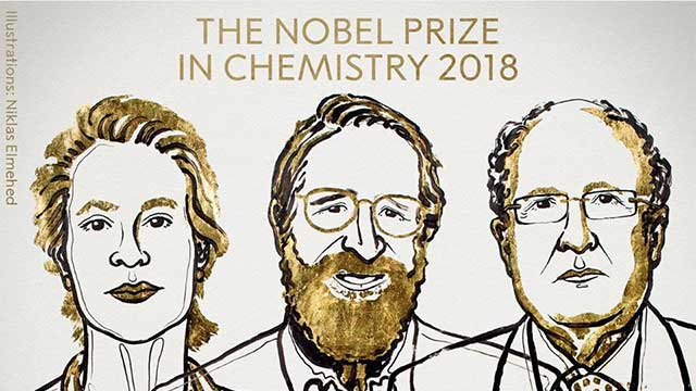Illustration of the winners of Chemistry Nobel Prize: Frances H. Arnold, George P. Smith and Sir Gregory P. Winter.